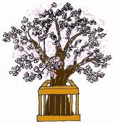 ひな祭りの絵カードイラスト素材/桜の木/小