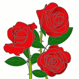 バラのイラスト・絵カード素材|夏の花のイラスト