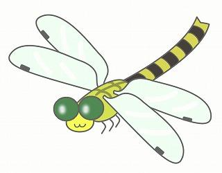 トンボのイラスト・絵カード素材|夏の虫のイラスト