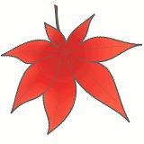 もみじの葉・紅葉のイラスト・絵カード素材|秋のイラスト