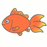 金魚のイラスト・絵カード素材|魚のイラスト
