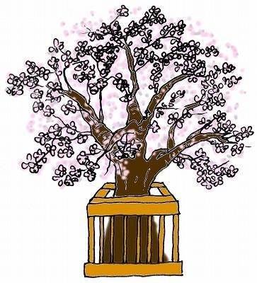 ひな祭りの絵カードイラスト素材/桜/中