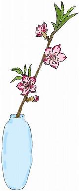 ひな祭りの絵カードイラスト素材/桃の花/大