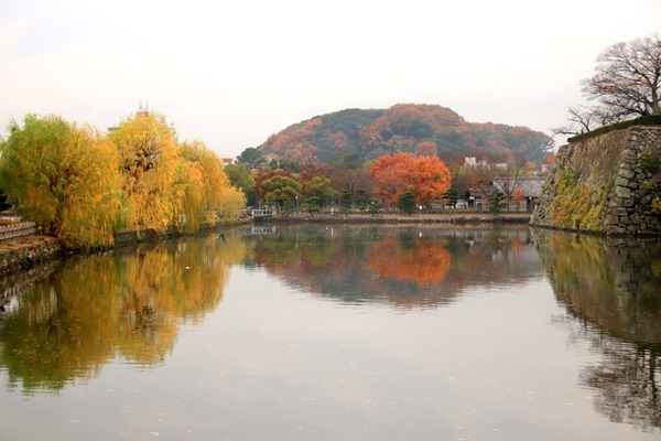 s_himejijo181204-14