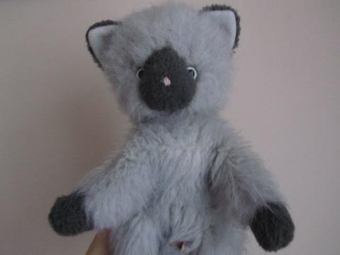 tokyo kitty1