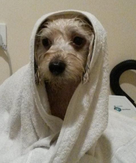 after bath 2