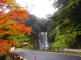 中村 紅葉と滝