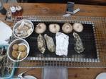 牡蠣小屋 �[1]