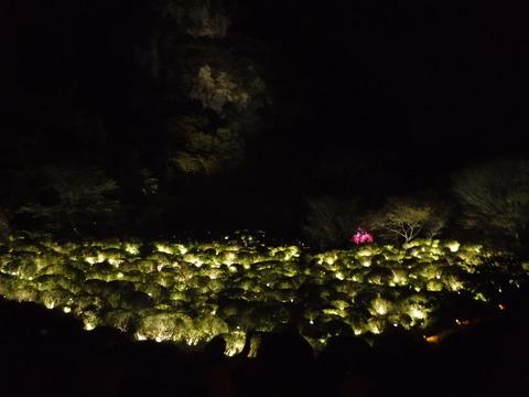 �御船山楽園 2