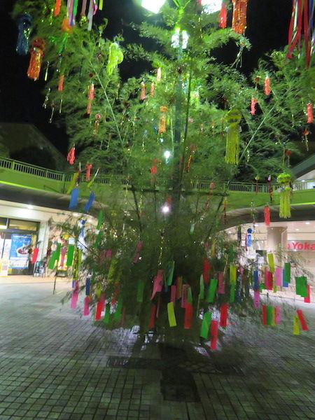 IMG_1473・26日夜の笹飾り