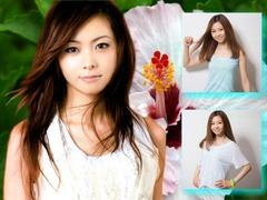 hibiscus11Left2_Mai00002A