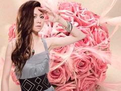 pink-rose_003_Mai00001