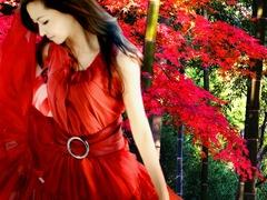 kyoto_autumn_003_Mai00002