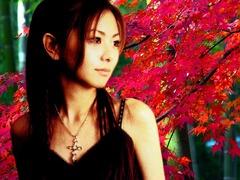 kouyou_0033_Mai00003