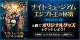 【IMAX】『NM3』CP109大バナー
