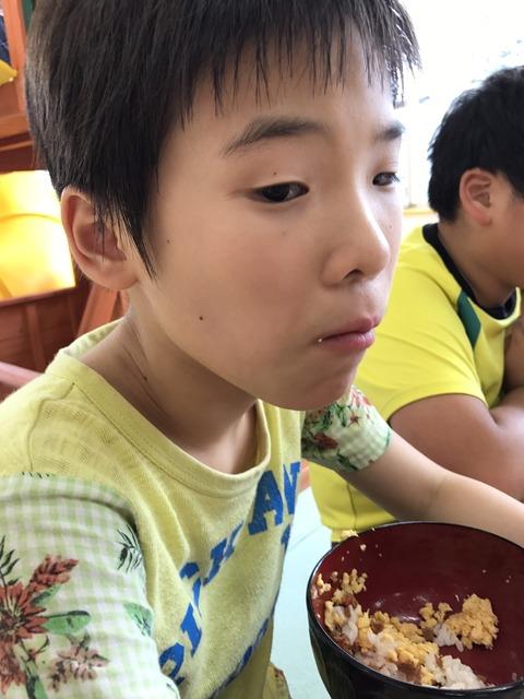 2017810綱島ログハウス_170824_0001