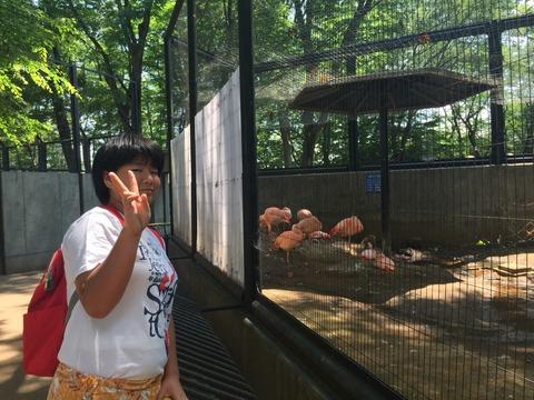 夢見が崎動物公園 62_180602_0084
