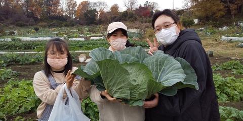 PIC 2020_4.12月_201212