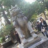 カッコイイ狛犬