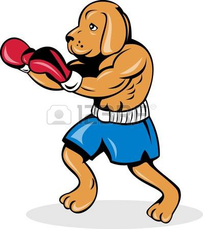 7715509-illustration-of-a-boxer-dog-with-gloves