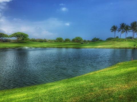 俺ハワゴルフ−3