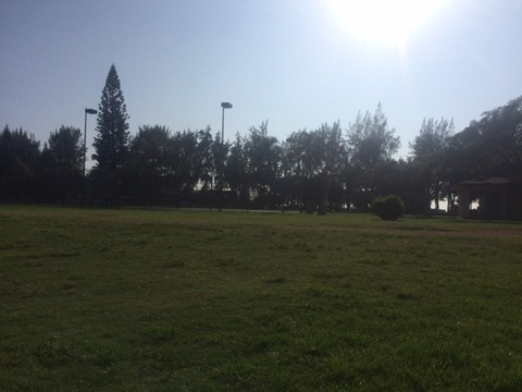 カピオラニパーク2