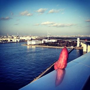 芋と東京港。その2