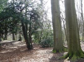 公園その1