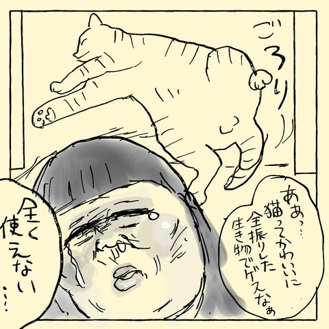 IMG_2224