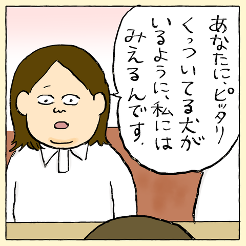 IMG_8158