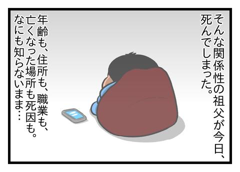 40077735