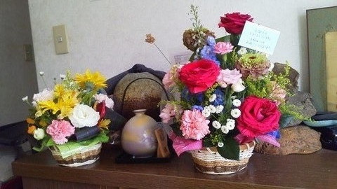 2013_0612_ZENT60歳の花