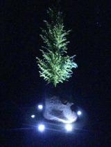 light091803.jpg