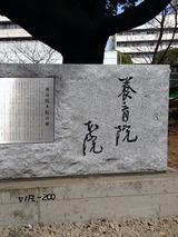 shibusawa003