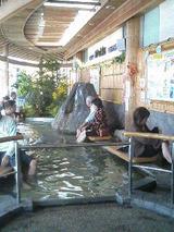 ashiyu113002.jpg