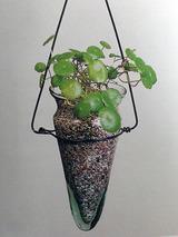 watergarden003