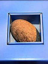 stone409.jpg
