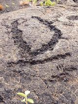 petroglyph01