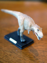 dinosaur01