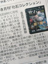 kaseki0612.jpg