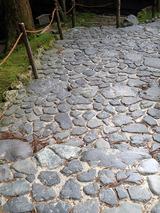 mosaic006
