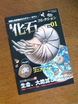 kaseki083101.jpg