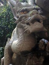dragon003