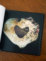 heartstones042007.jpg