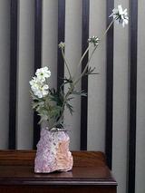 flower002
