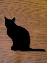 cat8901.jpg