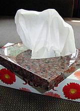 tissue033103.jpg