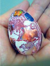 egg051201