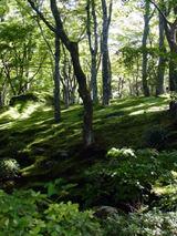 kyoukoku92703.jpg