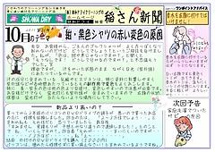 no-21  10月ネット用